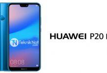 Huawei P20 Lite Root Yapma ve TWRP Yükleme